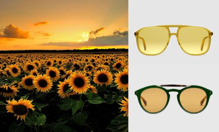 نظارات صفراء .jpg